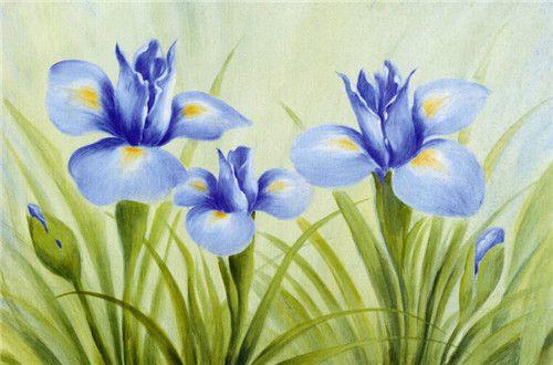 上海美术培训色彩画