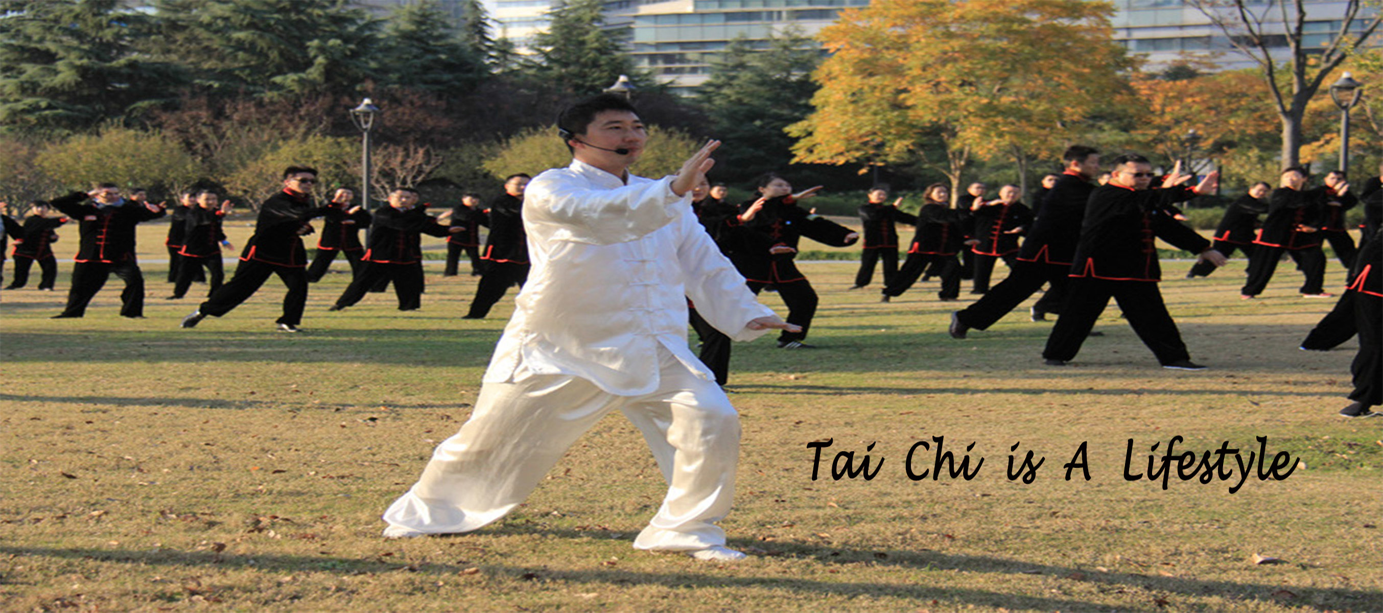 Tai Chi Kung Fu Martial Arts Activity