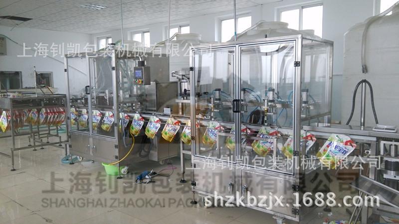 洗衣液灌装生产线2