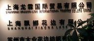上海龙霖国际