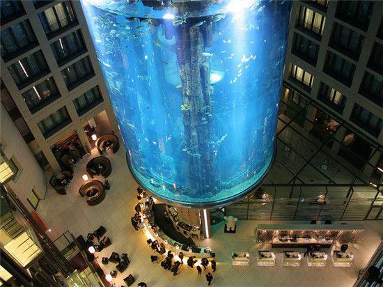 全球*奇特的电梯