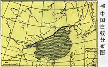 中國的白蟻分布(陰影部分)
