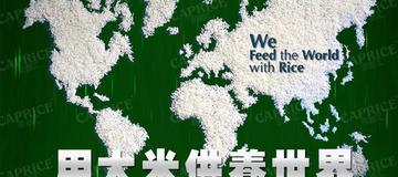 泰国国际大米会议聚焦稻米创新