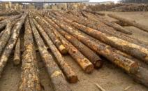 环保督查趋严,为何受伤的总是木材加工企业?