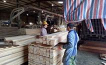 广西崇左市加快木材加工产业转型升级
