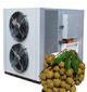 Application of air energy dryer in baking longan