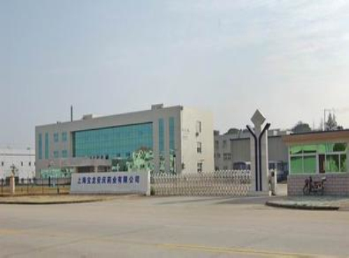 上海宝龙药业有限公司