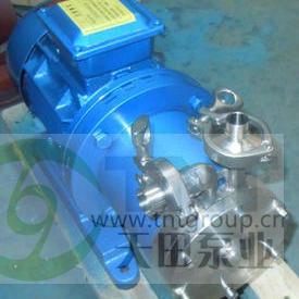 MHPX型耐高压高扬程磁力旋涡泵