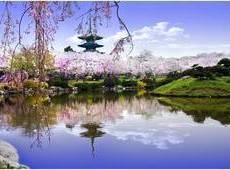 """湖北:春季""""十大赏花游""""线路 樱花为主 兼赏百花"""