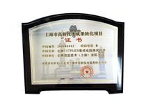 上海市高新技术转换项目