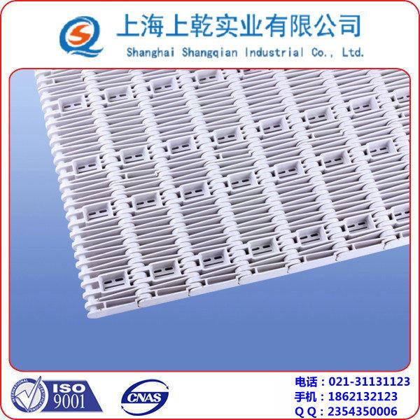 5997突肋塑料网带 (2).jpg