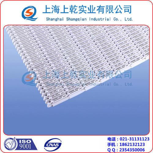 巴氏杀菌机塑料网带