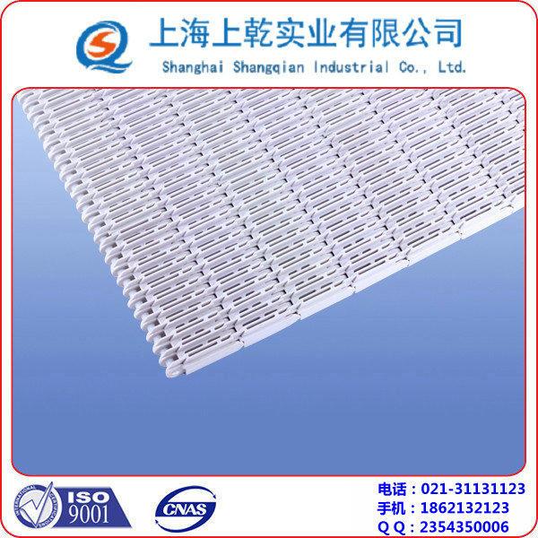 5997突肋塑料网带 (1).jpg