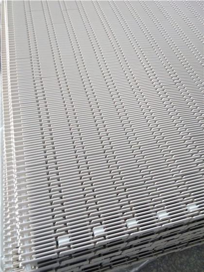 4809突肋塑料网带 (2).jpg