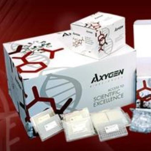 Axygen试剂盒