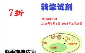 SignaGen转染试剂DNA/miRNA/siRNA