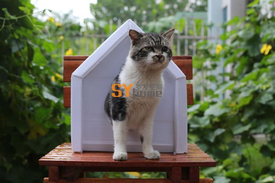 宠物集成房屋