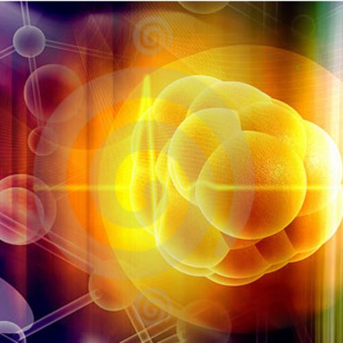 颠覆 50 年干细胞理论教条