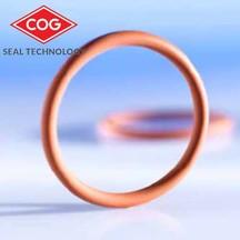 FEP O-Ring(FEP -VMQ/FKM)