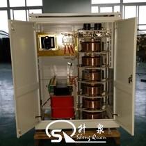 0-4000V三相电动调压器