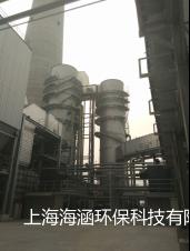 臺橡(南通)實業有限公司煙氣提標改造新增脫硝項目