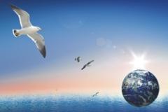 室内空气污染及危害研究