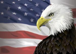 美国互惠生