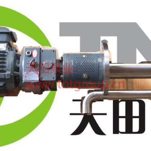 TBNP系列液下齒輪泵