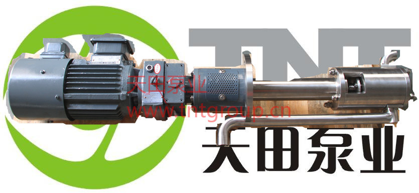 TDG液下齿轮泵.jpg