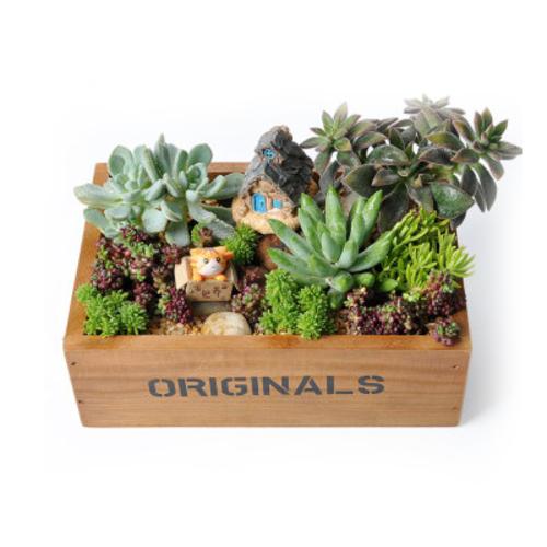 秘密花园(长方形棕色木盒)