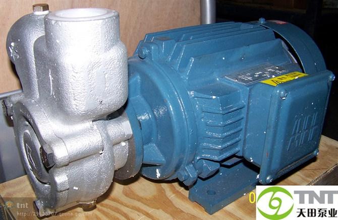 涡流泵.jpg