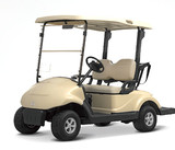 2 seats electric golf cart