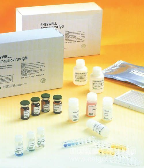 利用支持细胞包围肿瘤保护它免于激起免疫反应