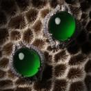 天然翡翠耳环