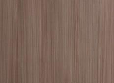 橄榄红豆杉(直)