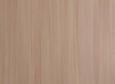 浅麻红豆杉(直)