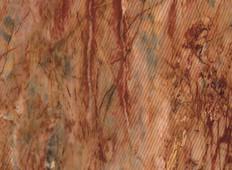 红地木(竖)