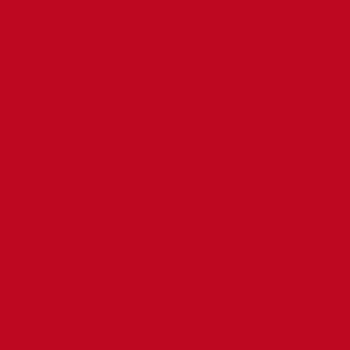 LY-KJ037节日红.jpg