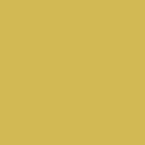 LY-KJ039金黄色.jpg