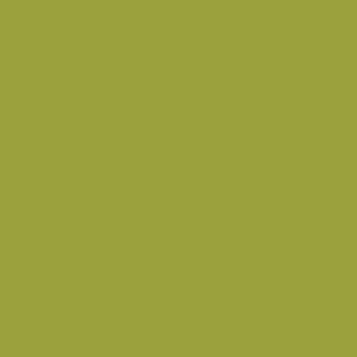 LY-TB015无机緑橄榄.jpg