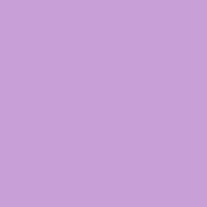 LY-TB047无机紫楠.jpg