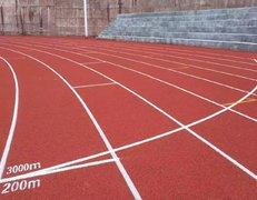 河北邯郸龙山中学300米塑胶跑道