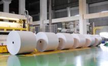 千亿国际网页版登录_造纸行业