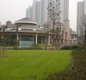 花园设计施工