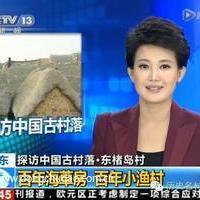 中国历史文化名村——东楮岛