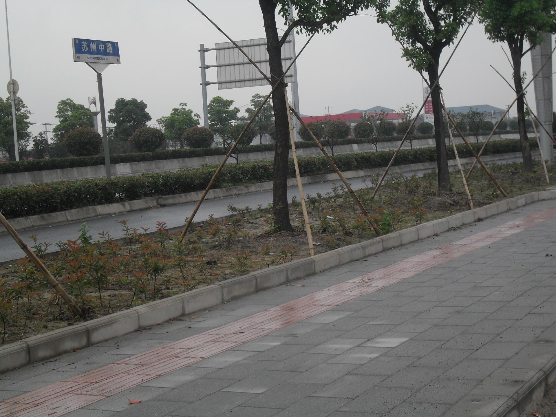 苏州中路01.JPG