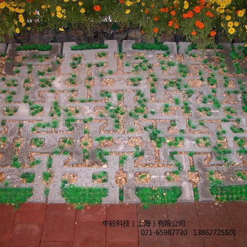 ARMORLOC护坡、防冲刷、植草砖系统.JPG
