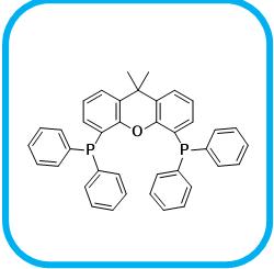4,5-双二苯基膦-9,9-二甲基氧杂蒽 161265-03-8.png