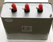 BSMJ系列并联电容器