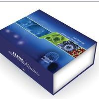 大鼠白介素6(IL-6)ELISA試劑盒